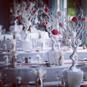 Centrepieces and decor White tree centrepieces, wedding, hire, glasgow, lanarkshire, decor