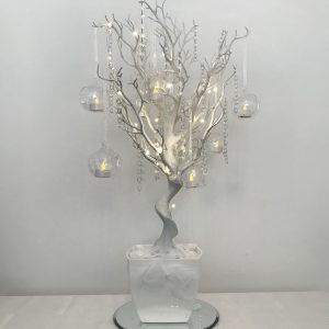 White twig tree, wishing tree package hire Scotland, Lily Special Events